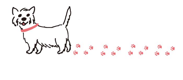 book_dog_d06